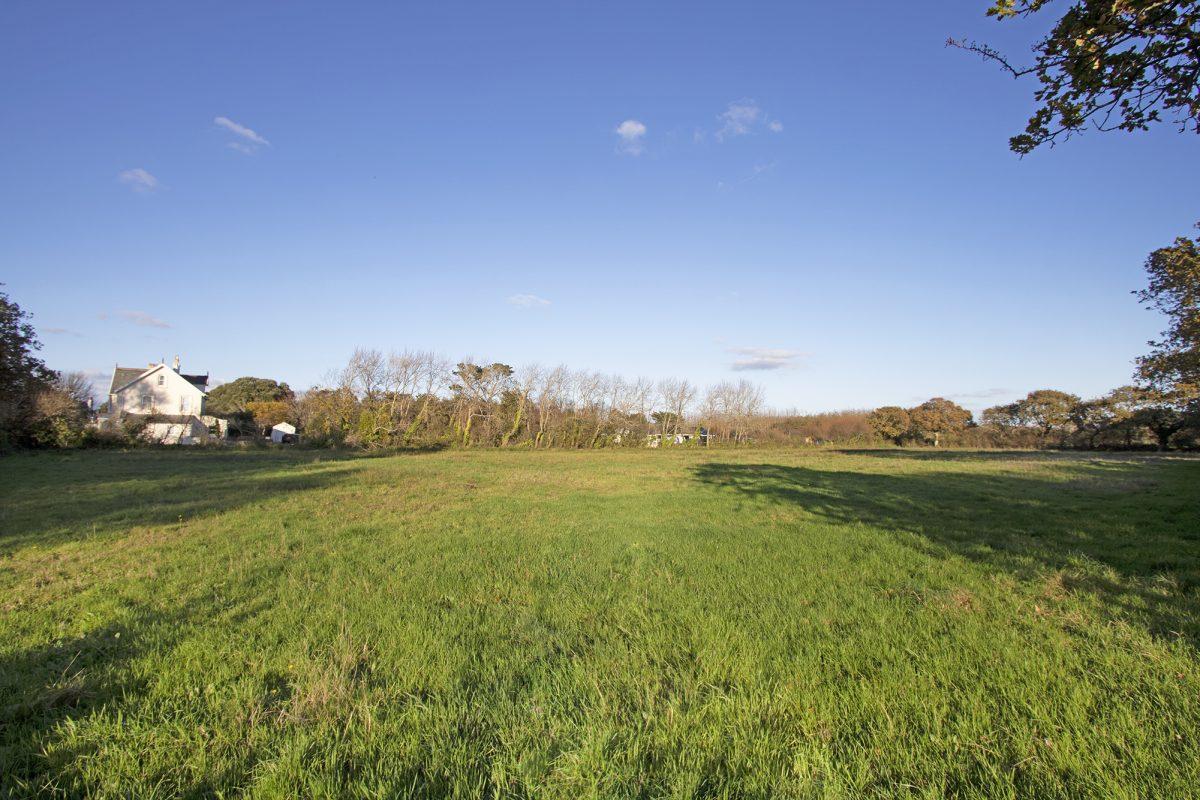 Field at Le Pibot